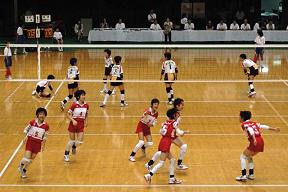 品川区小学生バレーボールチーム 立会アタッカーズ